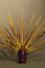 Encens naturel CHANDAN FLORA - Bois de Santal & fleur de Vanille