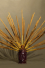 Encens naturel OPIUM - Fleur de Pavot